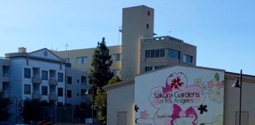 Sakura Gardens and Sakura ICF